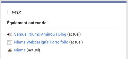 Lien Google +